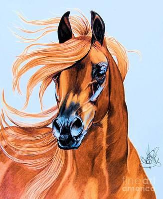 Arabian Portrait In Color Pencil Print by Cheryl Poland