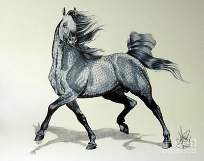 Arabians Are Beautiful Print by Cheryl Poland