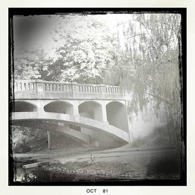 Arboretum Bridge Print by Justine Connolly