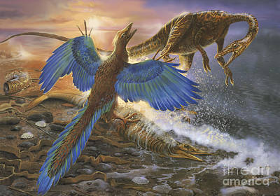 Triassic Digital Art - Archaeopteryx Defending Its Prey by Jan Sovak