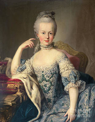 Versailles Painting - Archduchess Marie Antoinette Habsburg-lotharingen by Martin II Mytens