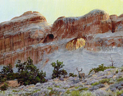 National Park Drawing - Arches Mulie by Bruce Morrison