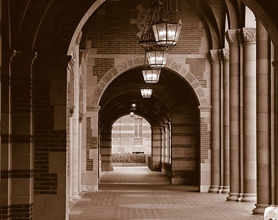 University Of California Photograph - Arches Of Royce Hall, University by Panoramic Images
