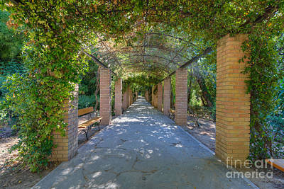 Benches Photograph - Archway II by George Atsametakis