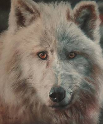 Arctic Wolf Print by Cherise Foster
