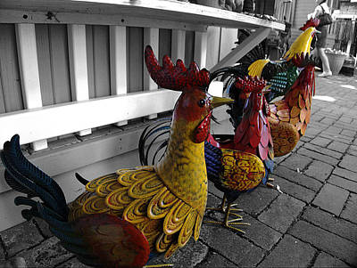 Toy Shop Photograph - Are You Chicken? by Richard Reeve