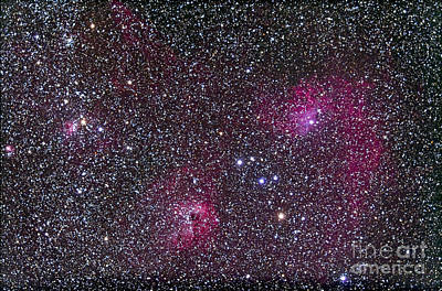 Ic Images Photograph - Area Of Flaming Star Nebula And Complex by Alan Dyer