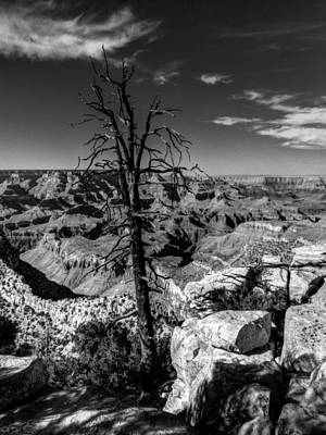 Canyons Photograph - Arizona - Grand Canyon 012 by Lance Vaughn