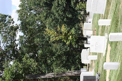 Soldier Photograph - Arlington National Cemetery - 121236 by DC Photographer