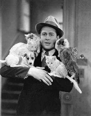 Of Felines Photograph - Armful Of Cats And Dogs by Underwood Archives