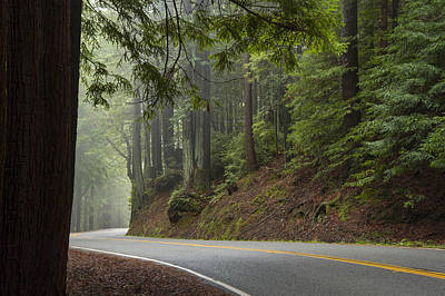 California Redwood Photograph - Around The Bend by Dustin  LeFevre
