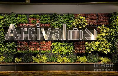 Arrival Sign Arrow And Flowers At Singapore Changi Airport Print by Imran Ahmed