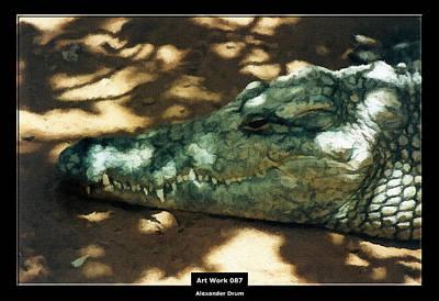 Art Work 087 Crocodile Print by Alexander Drum