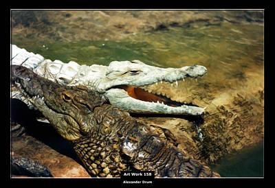 Art Work 158 Alligator Print by Alexander Drum