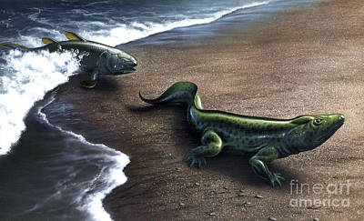 Two Fish Digital Art - Artists Concept Depicting The Evolution by Jerry LoFaro