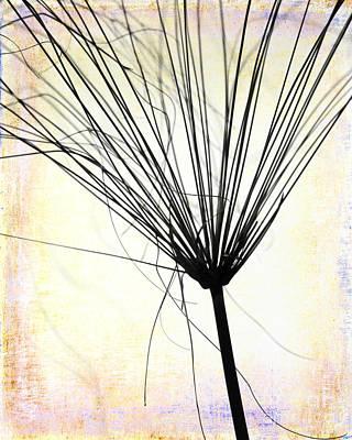 Artsy Weed Print by Sabrina L Ryan