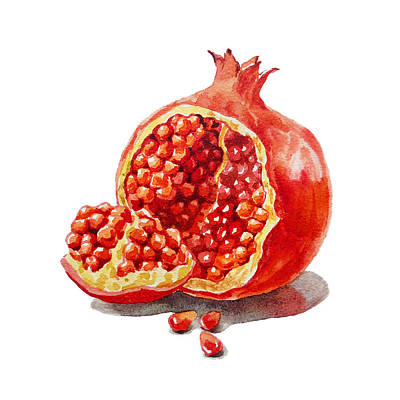Pomegranate Painting - Artz Vitamins A Pomegranate  by Irina Sztukowski