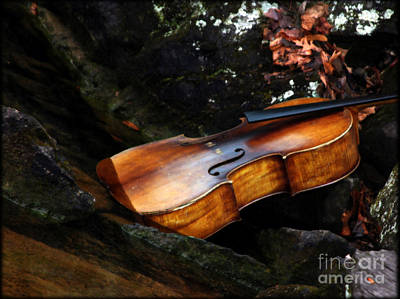 Cello Photograph - As Autumn Timbres  by Steven  Digman