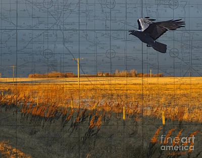 Judy Wood Digital Art - As The Crow Flies-fall Fields by Judy Wood