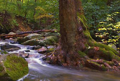 As The River Runs Print by Karol Livote