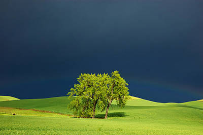 Prairie Storm Photograph - As The Sun Returns by Mary Lee Dereske