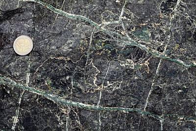 Serpentine Photograph - Asbestos Veins In Serpentinite by Dirk Wiersma