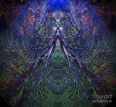Fractal Photograph - Ascension by Tim Gainey