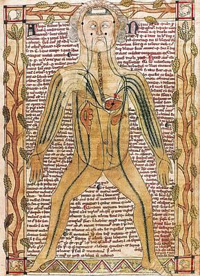 Anatomic Photograph - Ashmole Manuscript 399 1292. Treatise by Everett
