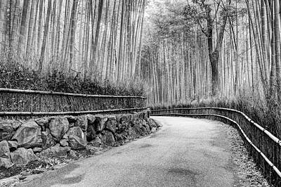 Bamboo Fence Photograph - Asia, Japan, Kyoto by Jaynes Gallery