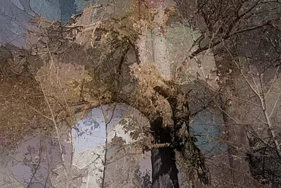 Earthtone Colored Art Photograph - Aspen Abstract by Bonnie Bruno