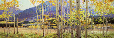 Panorama View Of Aspen Trees Print by Gary Kim