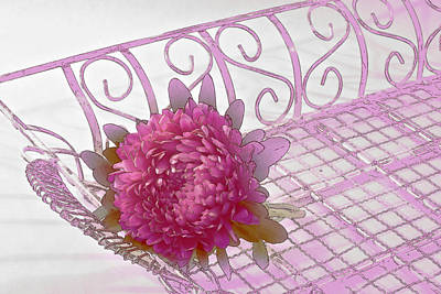 Aster Photograph - Aster In Tray - Digital Artwork by Sandra Foster