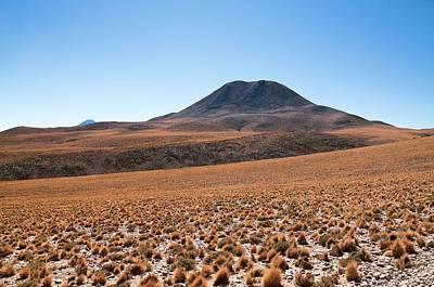 Atacama Desert Vegetation Print by Alma (eso/naoj/nrao)/a. Caproni (eso)