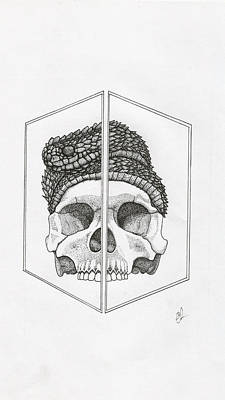 Burmese Python Drawing - Atheris by Eli Richardson