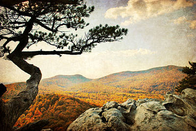 Atop The Rock Print by Kelly Nowak