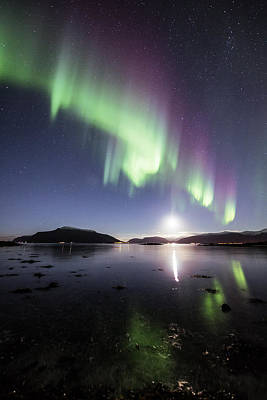 Arctic Photograph - Auroras With The Moon by Frank Olsen