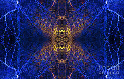 Mandala Photograph - Aurvandil by Tim Gainey