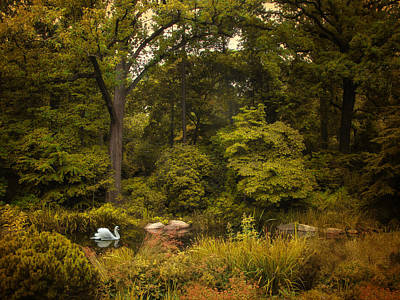 Autumn Arrives Print by Jessica Jenney