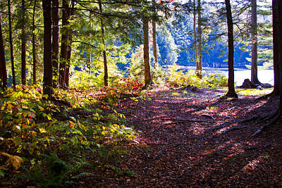 Autumn Foliage Photograph - Autumn At Cary Lake by David Patterson