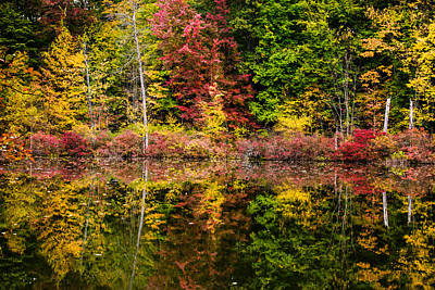 Fall Photograph - Autumn At Mendon Ponds  by Sara Frank