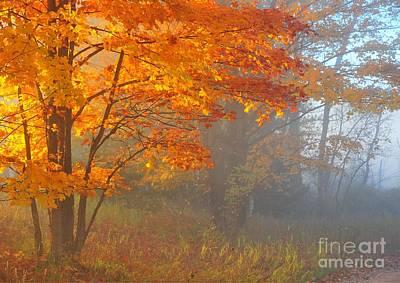Autumn Beacon In The Fog Print by Terri Gostola