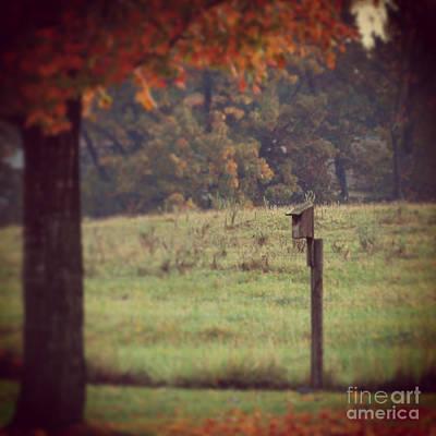 Autumn Leaf Photograph - Autumn Birdhouse by Kerri Farley