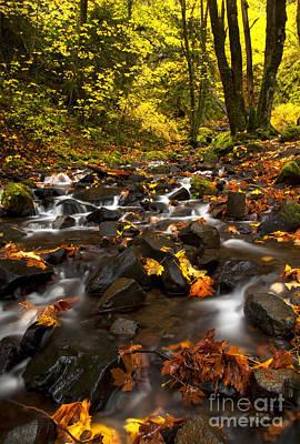 Autumn Breeze Print by Mike  Dawson