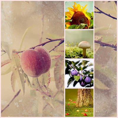 Autumn Collage Print by Heike Hultsch