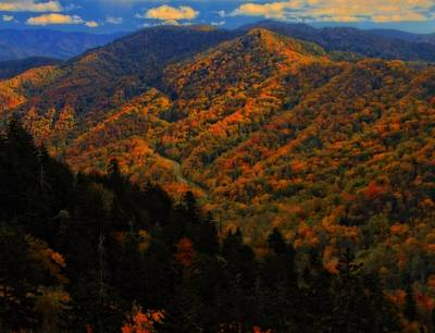 Autumn Colors Along The Smoky Mountains Print by Dan Sproul