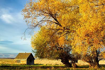 Autumn Colors - Lyons Road - Kittitas County - Washington - October  Print by Steve G Bisig