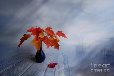 New Artist Digital Art - Autumn Colors by Veikko Suikkanen