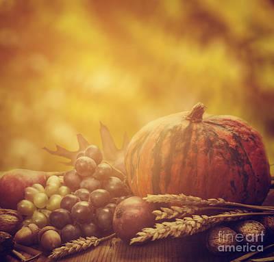 Gourd Photograph - Autumn Concept by Jelena Jovanovic