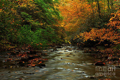 Autumn Creek Print by Melissa Petrey