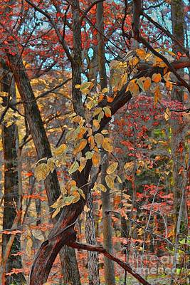 Autumn Day Print by Jeff Breiman
